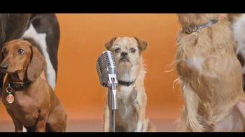 Best Friends Animal Society TV Spot, 'Dear, Humans' - Thumbnail 9