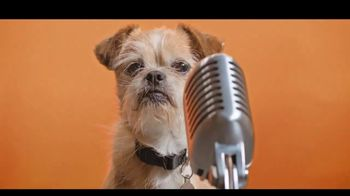 Best Friends Animal Society TV Spot, 'Dear, Humans'