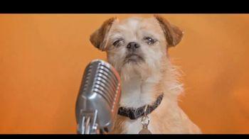 Best Friends Animal Society TV Spot, 'Dear, Humans' - Thumbnail 3