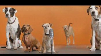 Best Friends Animal Society TV Spot, 'Dear, Humans' - Thumbnail 7