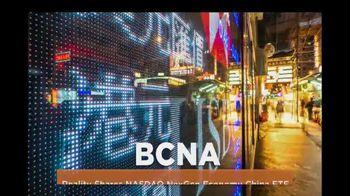 Reality Shares Blockchain ETFs TV Spot, 'Tickers: BLCN & BCNA' - Thumbnail 5