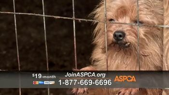 ASPCA TV Spot, 'Make a Difference' Featuring Eric McCormack - Thumbnail 5