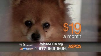ASPCA TV Spot, 'Make a Difference' Featuring Eric McCormack - Thumbnail 6