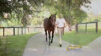 Claiborne Farm TV Spot, 'Orb 2018'