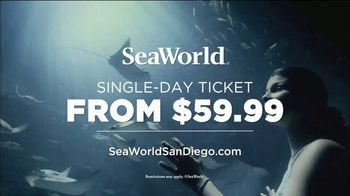 SeaWorld Electric Eel TV Spot, 'Tallest and Fastest' - Thumbnail 10