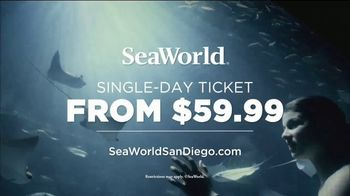 SeaWorld Electric Eel TV Spot, 'Tallest and Fastest' - Thumbnail 9