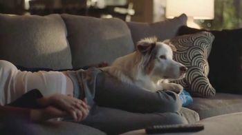 Big Lots Fourth of July Deals TV Spot, 'Serving Families' - Thumbnail 3