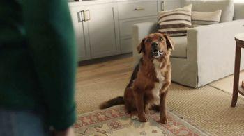 Filtrete TV Spot, 'Keep the Dog'