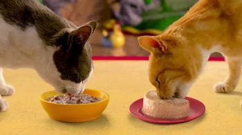 Friskies Extra Gravy TV Spot, 'Fantasy Sweepstakes' - Thumbnail 5