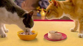 Friskies Extra Gravy TV Spot, 'Fantasy Sweepstakes' - Thumbnail 6