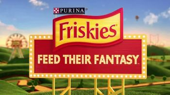 Friskies Extra Gravy TV Spot, 'Fantasy Sweepstakes' - Thumbnail 8
