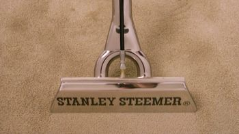 Stanley Steemer TV Spot, 'Oriental and Area Rugs: Half Off' - Thumbnail 1