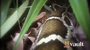 History Vault TV Spot, 'UFO Incidents' - Thumbnail 8