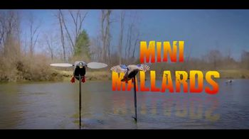 Mojo Outdoors Elite Series TV Spot, 'Spinning Wing Duck Decoy Line' - Thumbnail 4