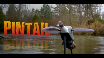 Mojo Outdoors Elite Series TV Spot, 'Spinning Wing Duck Decoy Line' - Thumbnail 6
