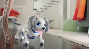 Zoomer Playful Pup TV Spot, 'He Moves & Sounds Just Like a Real Dog!' - Thumbnail 9