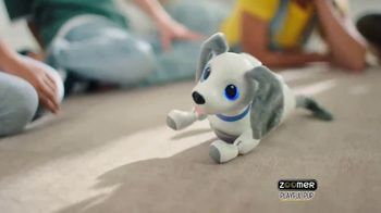 Zoomer Playful Pup TV Spot, 'He Moves & Sounds Just Like a Real Dog!' - Thumbnail 6