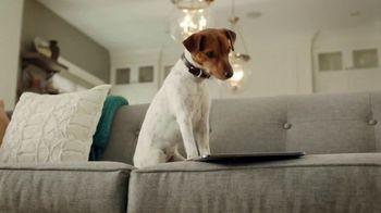 PetComfort Feeding System TV Spot, 'Sneaky Pete'