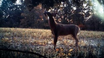 Wildlife Research Center Special Golden Estrus TV Spot, 'White Tails' - Thumbnail 6