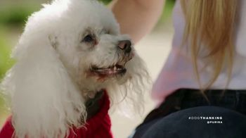 Purina TV Spot, 'Pets & Vets' Featuring Maria Menounos - Thumbnail 2