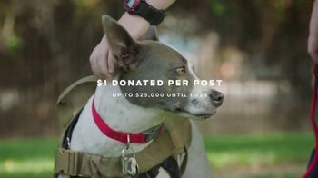 Purina TV Spot, 'Animal Rescue Foundation: Madeline and Lady' Featuring Maria Menounos - Thumbnail 9