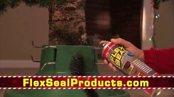 Flex Seal TV Spot, 'Holidays: Family of Products' Featuring Phil Swift - Thumbnail 4