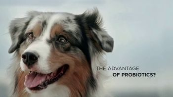Purina Pro Plan Savor TV Spot, 'Probiotics'