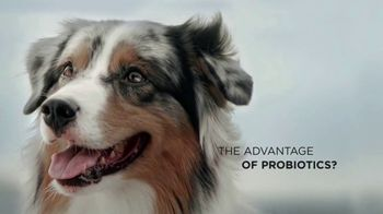 Purina Pro Plan Savor TV Spot, 'Probiotics' - Thumbnail 4