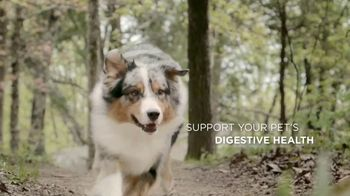 Purina Pro Plan Savor TV Spot, 'Probiotics' - Thumbnail 7