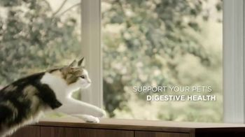Purina Pro Plan Savor TV Spot, 'Probiotics' - Thumbnail 8