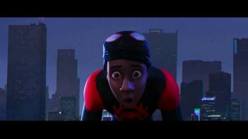 Spider-Man: Into the Spider-Verse - Alternate Trailer 13