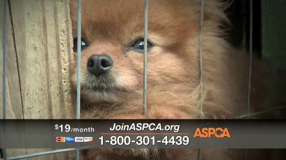 ASPCA TV Commercial, 'Winter Help'