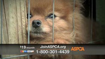 ASPCA TV Spot, \'Winter Help\'