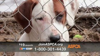 ASPCA TV Spot, 'Winter Help' - Thumbnail 4