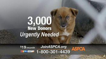 ASPCA TV Spot, 'Winter Help' - Thumbnail 5