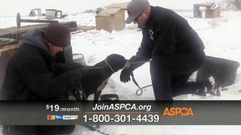 ASPCA TV Spot, 'Winter Help' - Thumbnail 6