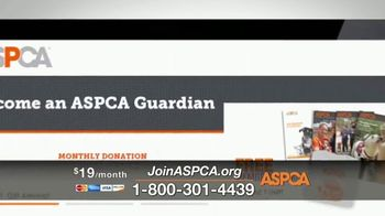 ASPCA TV Spot, 'Winter Help' - Thumbnail 7