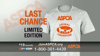 ASPCA TV Spot, 'Winter Help' - Thumbnail 8