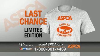 ASPCA TV Spot, 'Winter Help' - Thumbnail 8