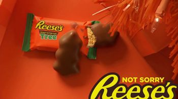 Reese's TV Spot, 'Only Need Two Things' - Thumbnail 10