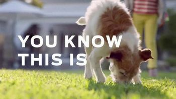 Purina TV Spot, 'Helping Power Your Dog's Best Years with Healthy Dog Food' - Thumbnail 2