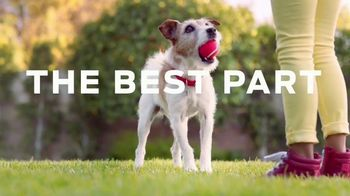 Purina TV Spot, 'Helping Power Your Dog's Best Years with Healthy Dog Food'
