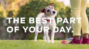 Purina TV Spot, 'Helping Power Your Dog's Best Years with Healthy Dog Food' - Thumbnail 4