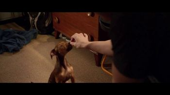 A Dog's Way Home - Alternate Trailer 1