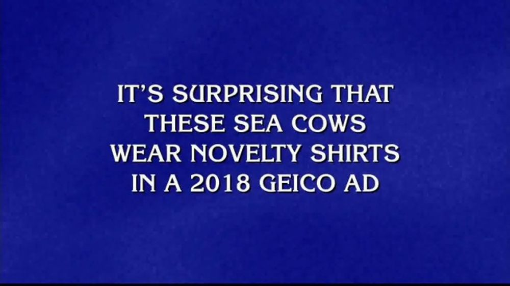 Geico Accident Forgiveness >> Geico Tv Commercial Jeopardy Manatees Video