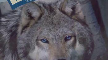 Blue Buffalo BLUE Wilderness TV Spot, 'Wolf Dreams' - Thumbnail 4
