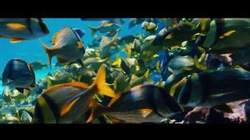 Atlantis TV Spot, 'Endless Flow: August' - Thumbnail 5