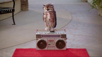 America's Best Celebrity Sales Event TV Spot, 'Designer Frames' - 962 commercial airings