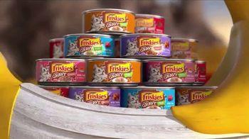 Friskies Extra Gravy Pate and Chunky TV Spot, 'Friskies World' - Thumbnail 6