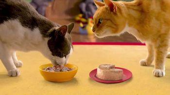Friskies Extra Gravy Pate and Chunky TV Spot, 'Friskies World' - Thumbnail 8